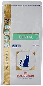 royal canin dental cat review