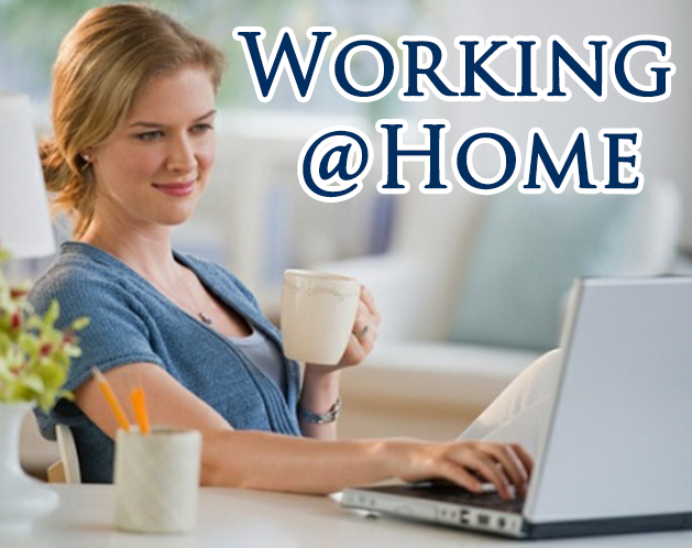 work from home image reviewer